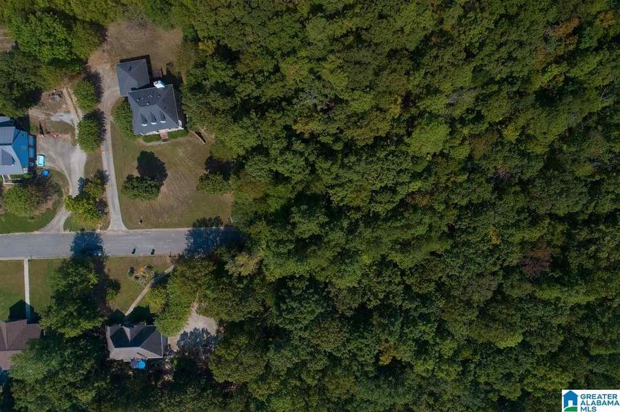 Round Hill Road # 0 Pelham, AL - Image 2
