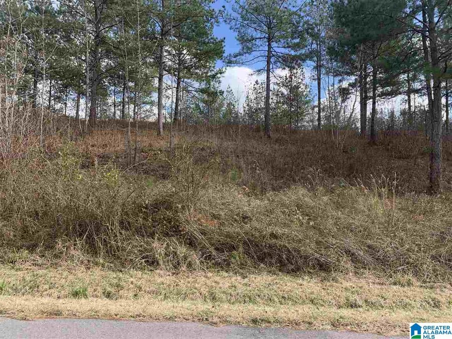 Lot-08 MILL CREEK LN # 8 Sylacauga, AL - Image 0