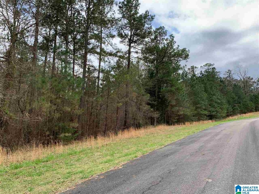 0 Long Point Rd # 156/157 Double Springs, AL - Image 0