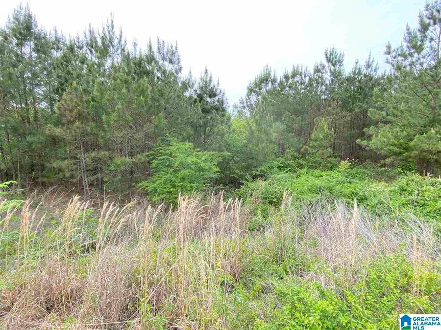 149 Rock Crest Road # 22 Odenville, AL - Image 2