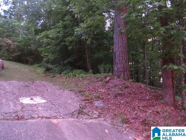 301 Edgeview Avenue # 1, 2, 3 Homewood, AL - Image 0