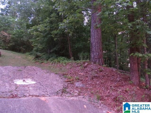 301 Edgeview Avenue # 1, 2, 3 Homewood, AL - Image 1