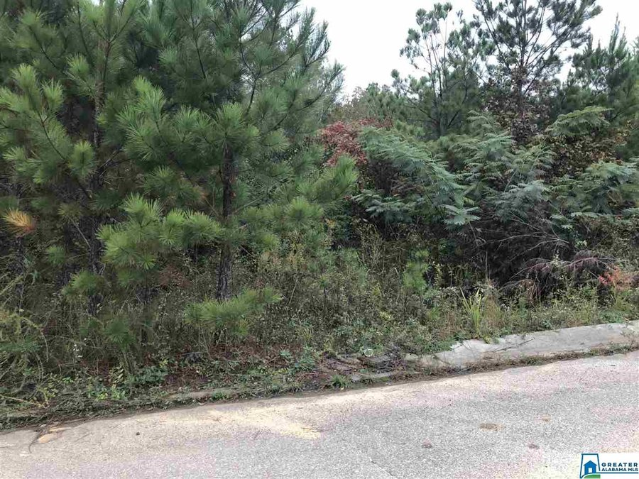 9815 Deerview Lane # 32 Kimberly, AL - Image 0