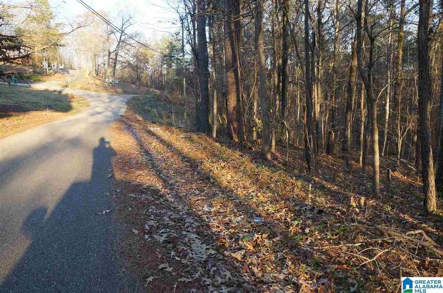 0 Azalea Road # .76 acres Sylacauga, AL - Image 2