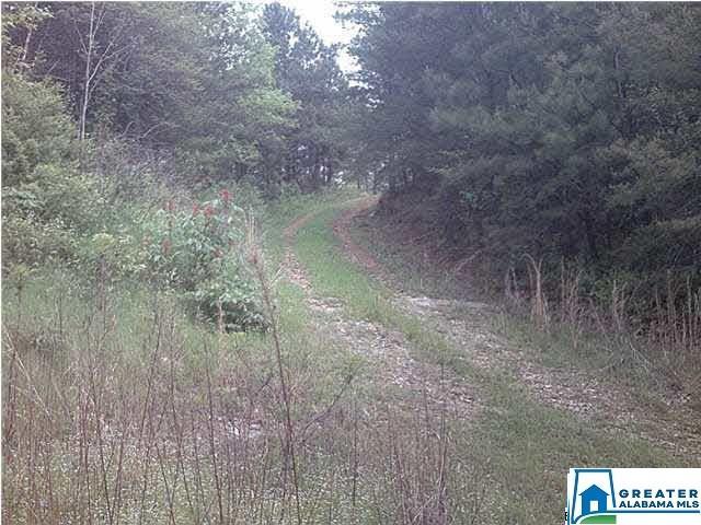 7 County Road 919 # 7 Clanton, AL - Image 0
