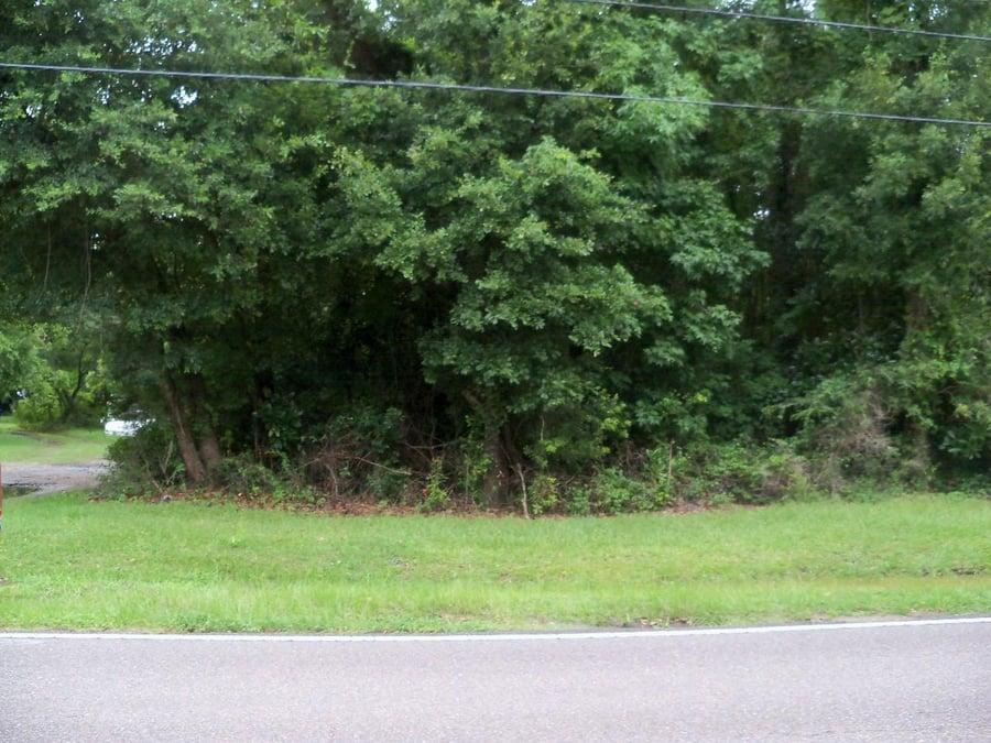 0 Grimball Rd Charleston, SC - Image 0
