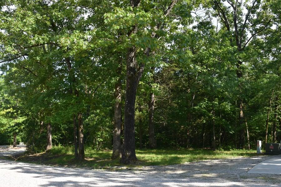 Lot 10 Oak Tree Point Shell Knob, MO - Image 0