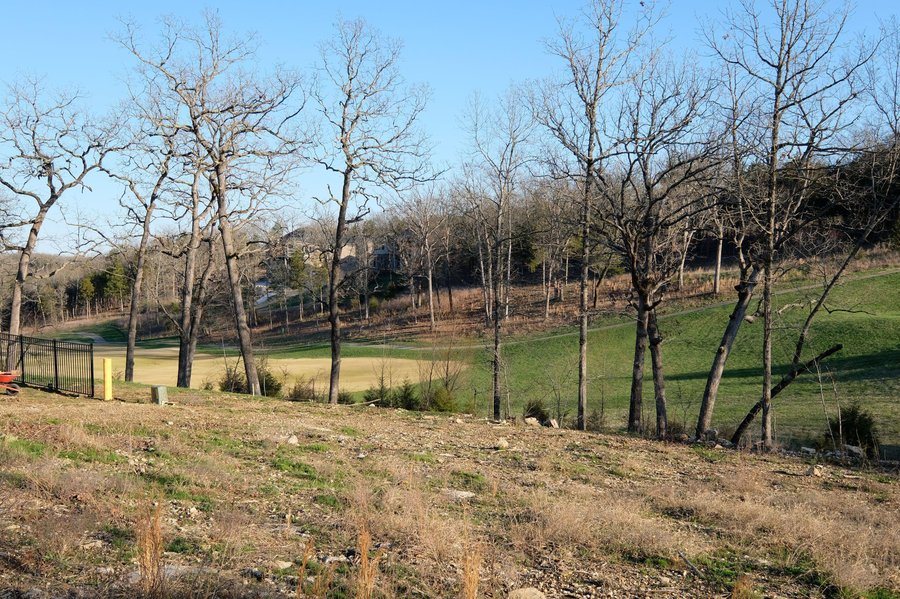 Lot 26 Winged Foot Drive Branson, MO - Image 2