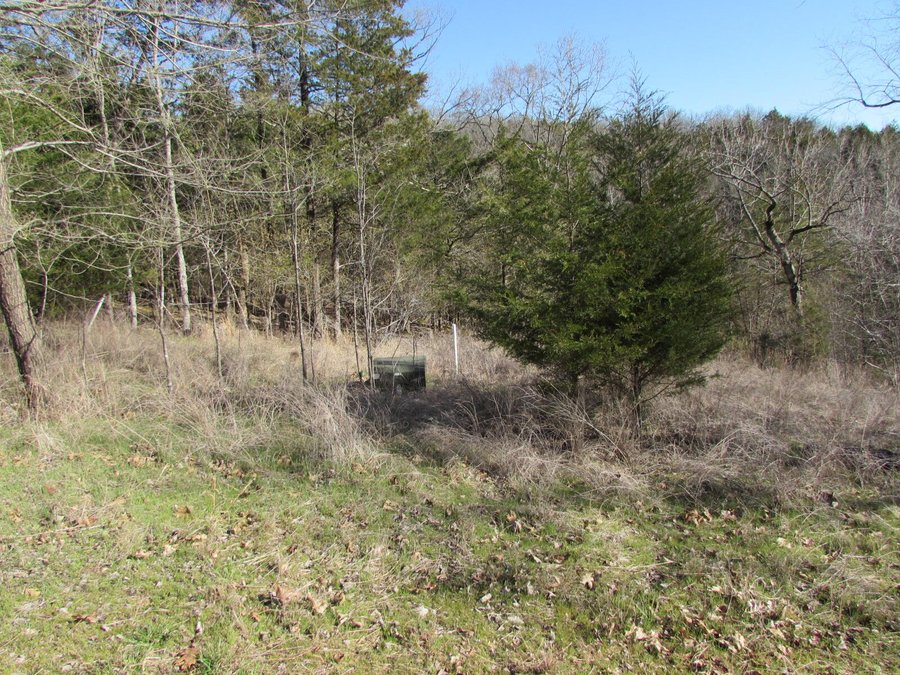 342 Rocky Point Loop Branson, MO - Image 1