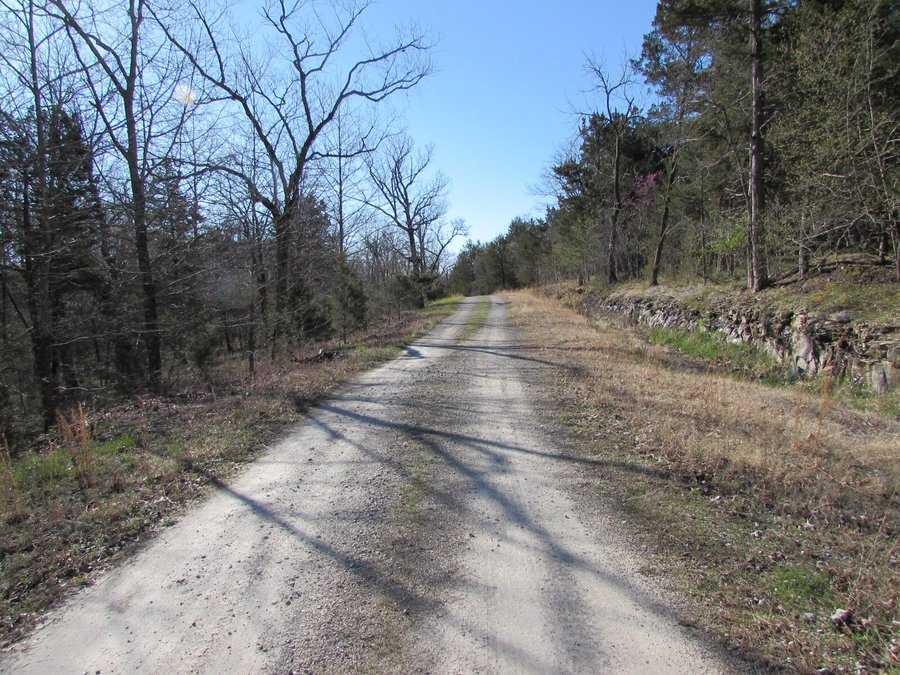 342 Rocky Point Loop Branson, MO - Image 2