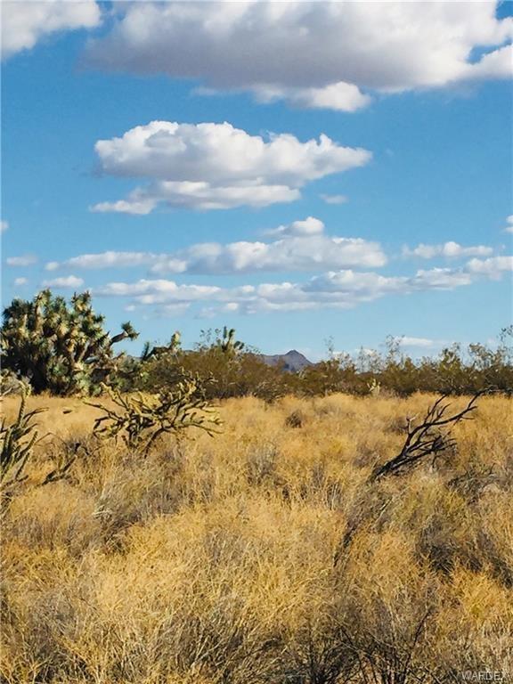 2363 S Goldmine Rd. Yucca, AZ - Image 2