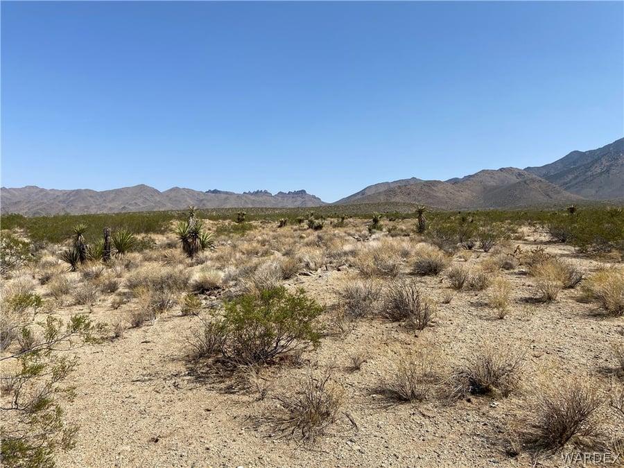 130 Acres Dolan Springs, AZ - Image 1
