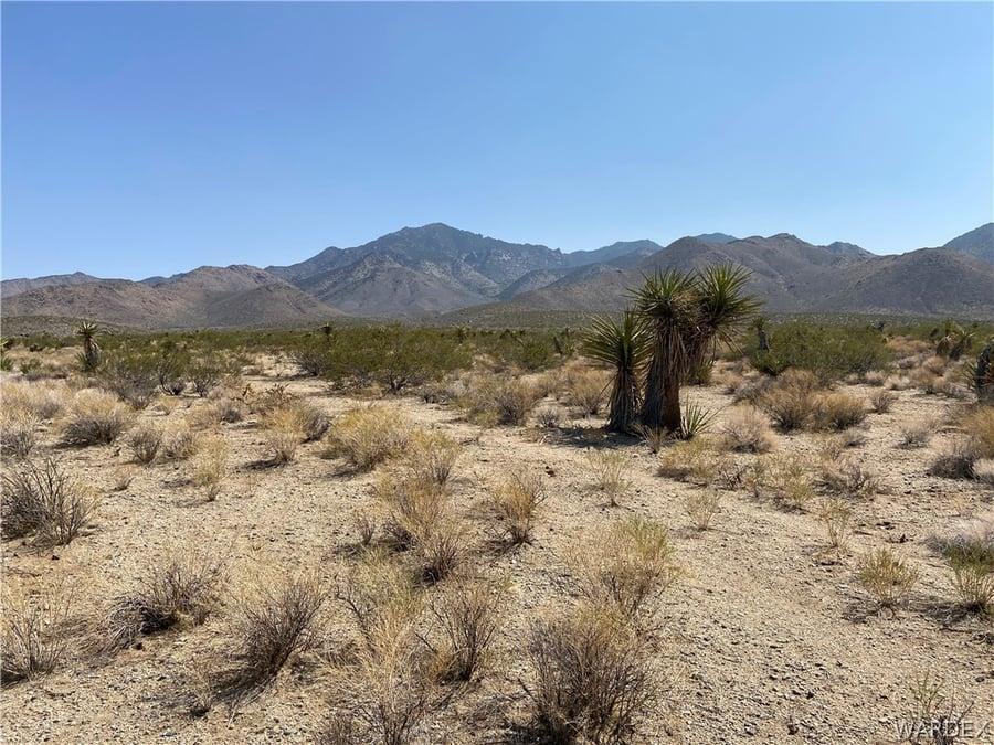130 Acres Dolan Springs, AZ - Image 2
