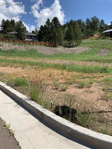 127 E Village Terrace Woodland Park, CO - Image 1
