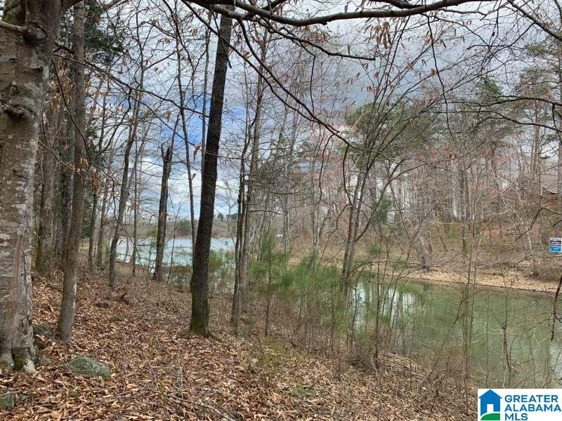 0 Long Point Rd # 156/157 Double Springs, AL - Image 3