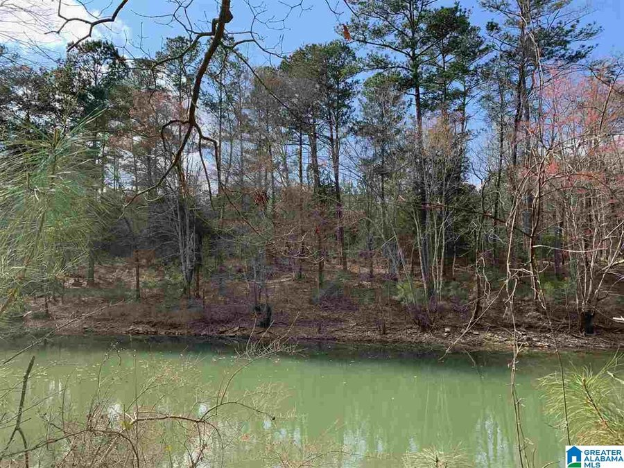 0 Long Point Rd # 156/157 Double Springs, AL - Image 4