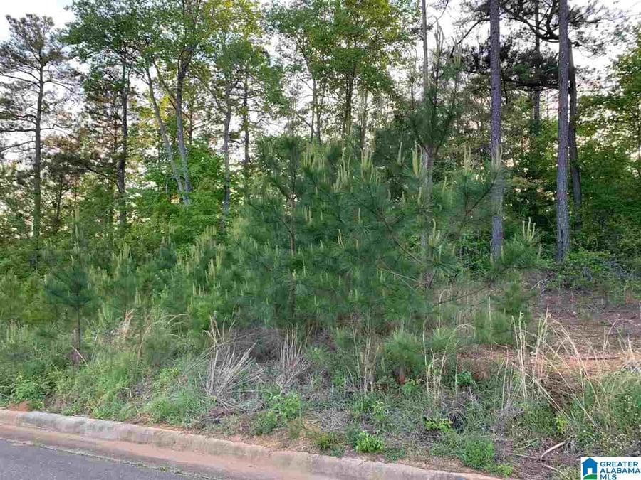 0 Peaceburg Road # 9 Weaver, AL - Image 4
