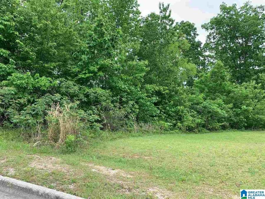 0 Se Browning Court Se # 67 Jacksonville, AL - Image 4