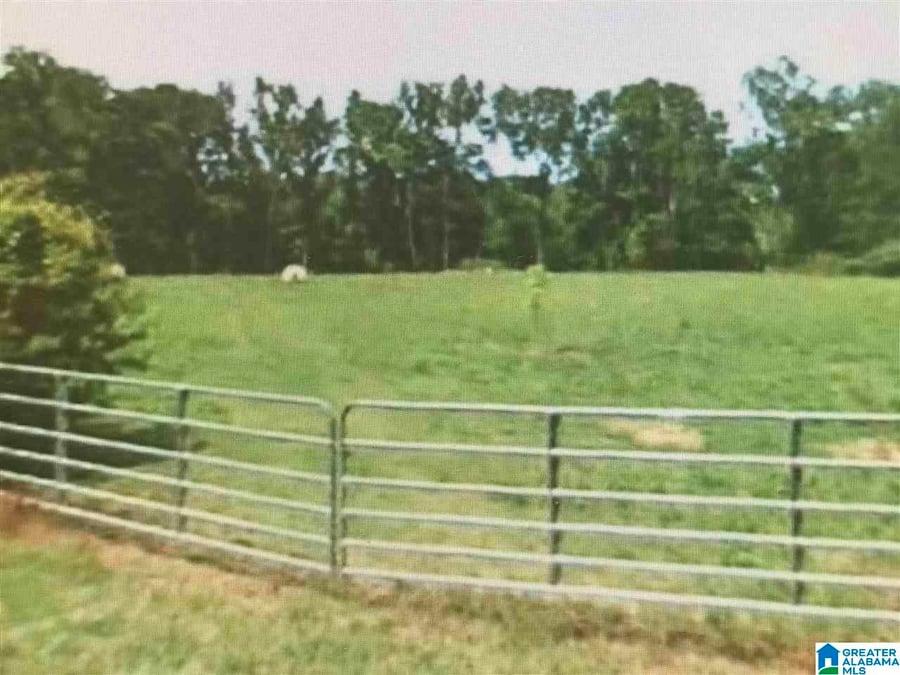 Gandy Ferry Road # 2.8 Acres Demopolis, AL - Image 3