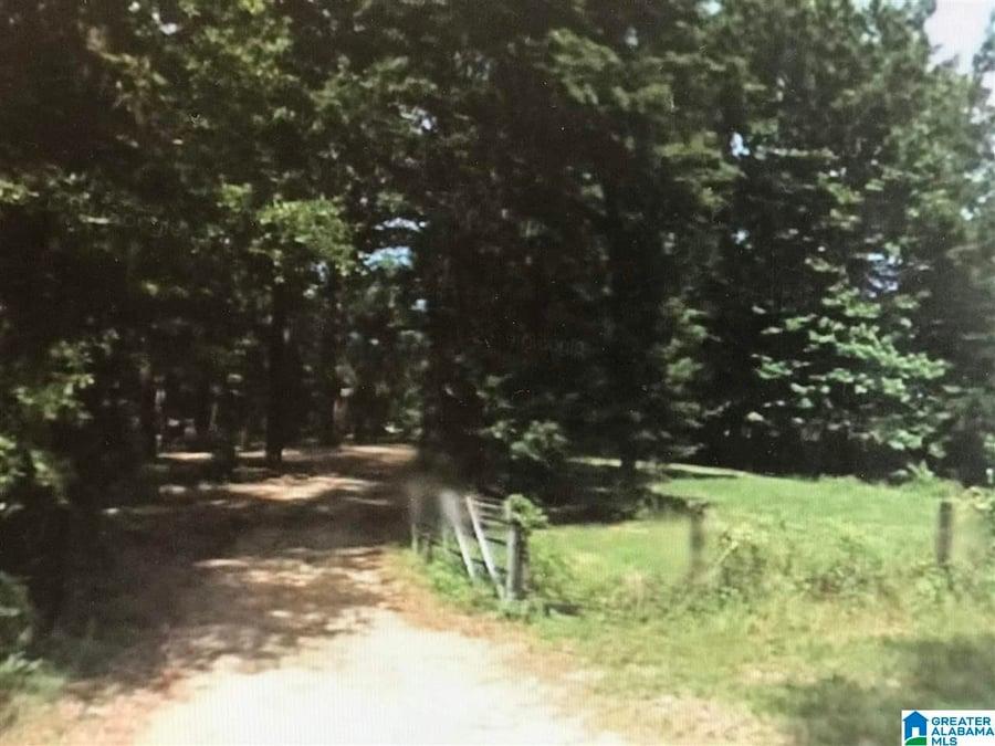 Gandy Ferry Road # 2.8 Acres Demopolis, AL - Image 4