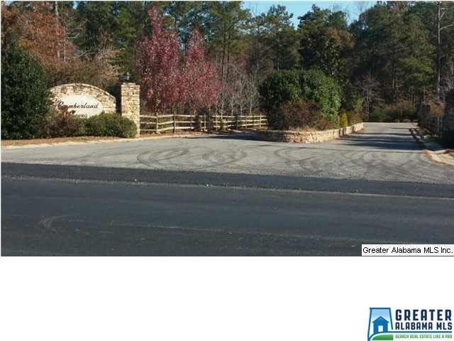 Haynes Drive # 34 LOTS Vincent, AL - Image 5
