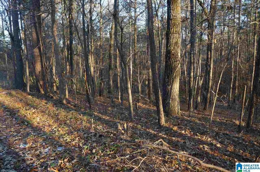 0 Azalea Road # .76 acres Sylacauga, AL - Image 4