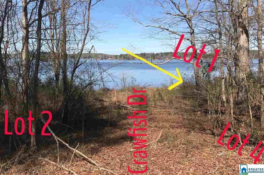 112 Crawfish Lane # 4 Shelby, AL - Image 5