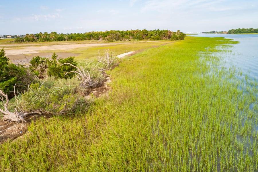 0 Little Goat Island Isle Of Palms, SC - Image 3