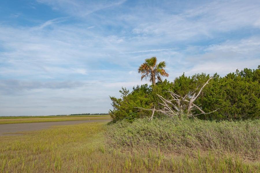 0 Little Goat Island Isle Of Palms, SC - Image 5