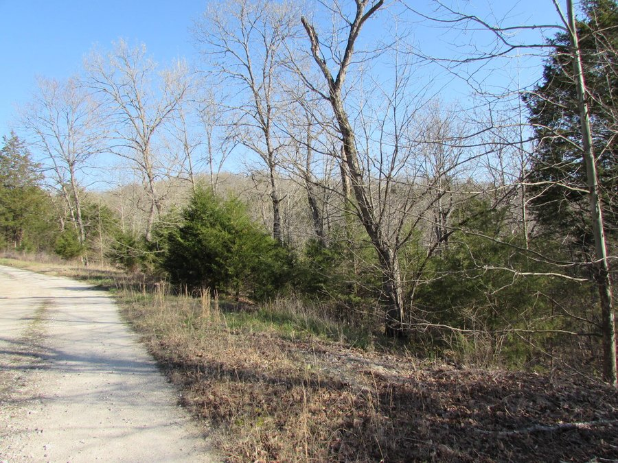 342 Rocky Point Loop Branson, MO - Image 3