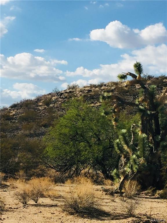 2363 S Goldmine Rd. Yucca, AZ - Image 3