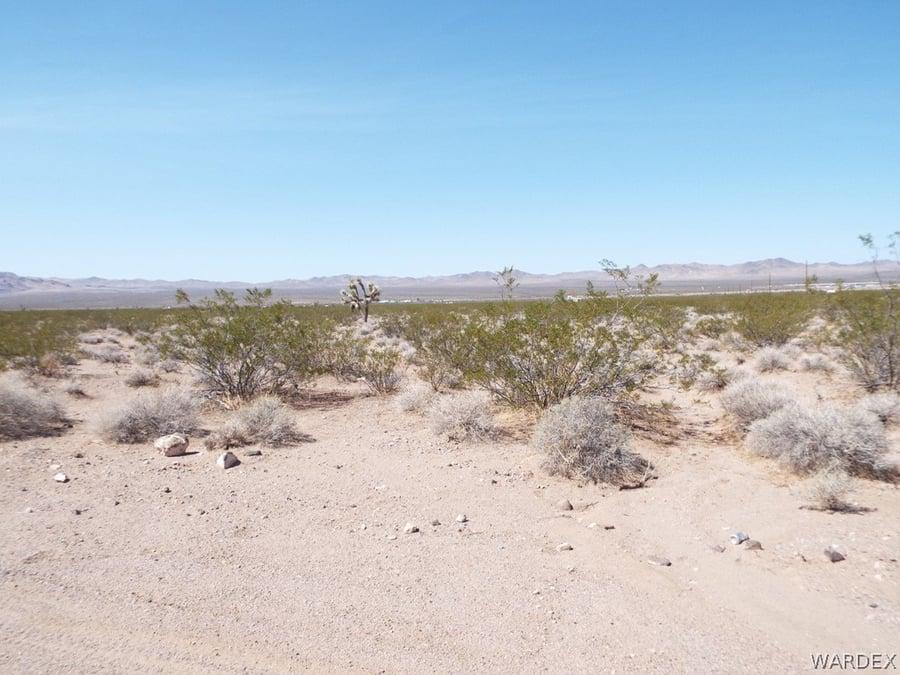 19585 N Wright Road White Hills, AZ - Image 3