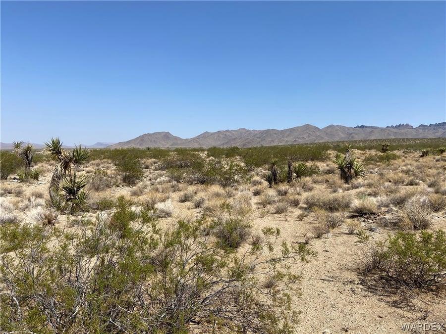 130 Acres Dolan Springs, AZ - Image 5