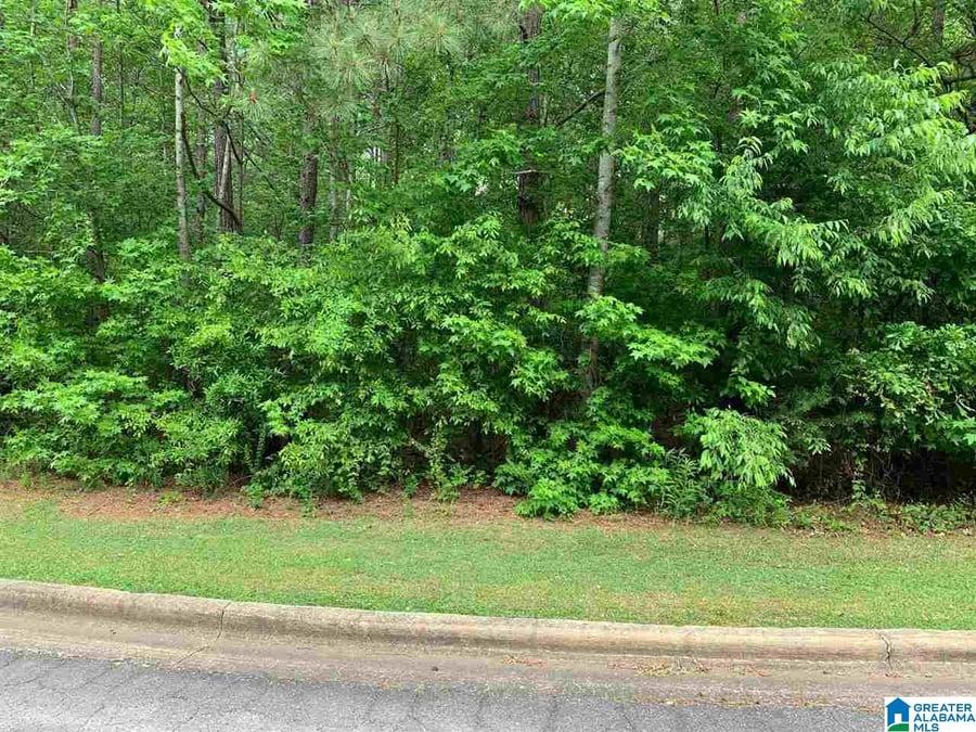 0 Se Browning Court Se # 67 Jacksonville, AL - Image 6