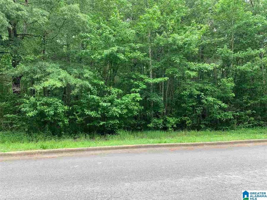 0 Se Browning Court Se # 67 Jacksonville, AL - Image 7