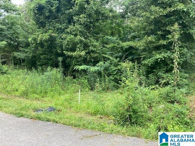 37 Starboard Drive # Lots 1&2 Shelby, AL - Image 10