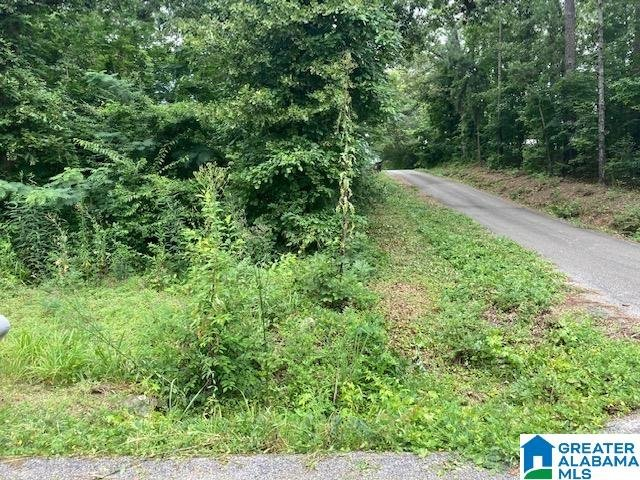 37 Starboard Drive # Lots 1&2 Shelby, AL - Image 14