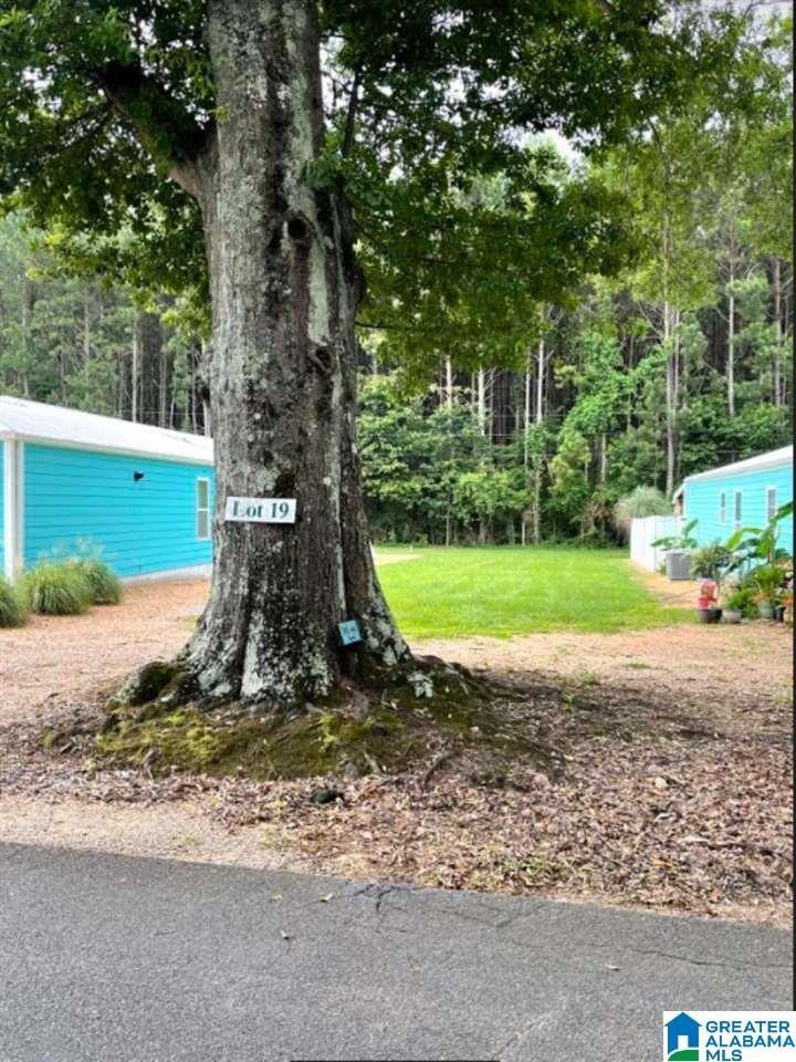 Lot 19 BLUE EYE ROAD W # 19 Talladega, AL - Image 18
