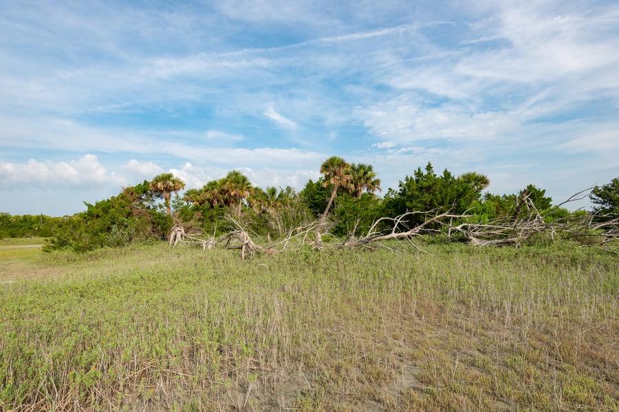 0 Little Goat Island Isle Of Palms, SC - Image 13