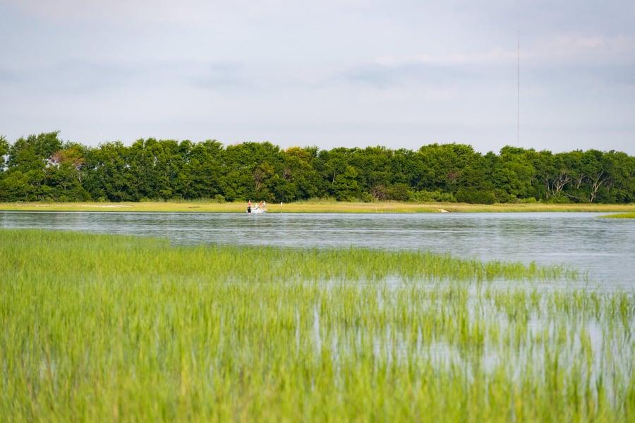 0 Little Goat Island Isle Of Palms, SC - Image 30