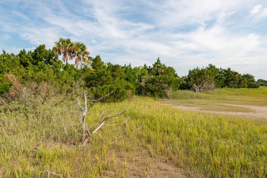 0 Little Goat Island Isle Of Palms, SC - Image 6