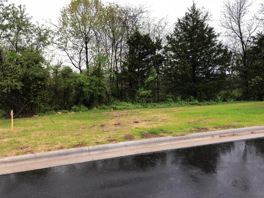Lot 97 Cypress Point Springfield, MO - Image 10