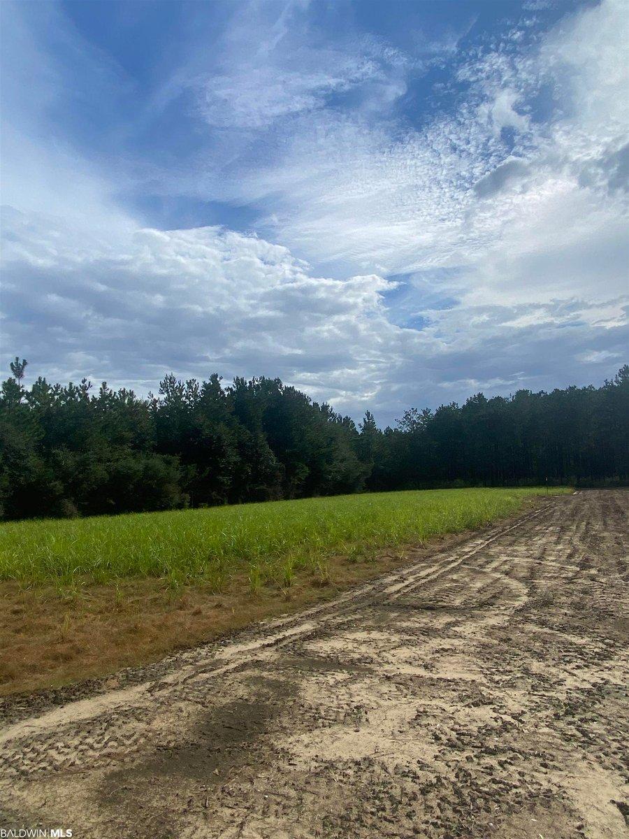 31601 County Road 64 Ext Robertsdale, AL - Image 20