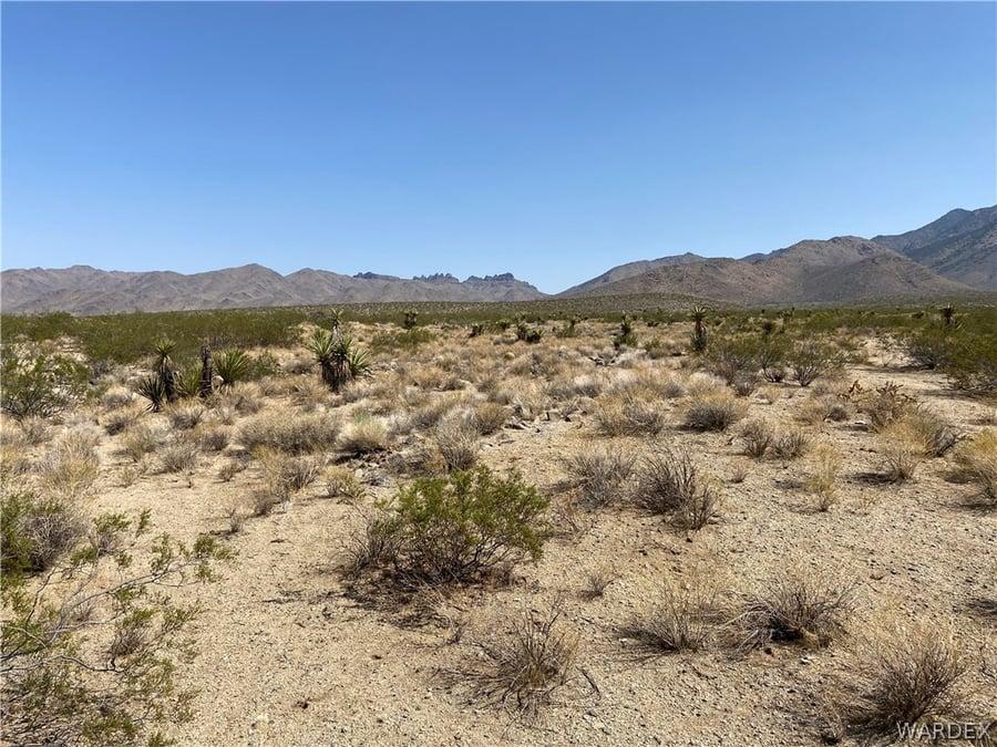 130 Acres Dolan Springs, AZ - Image 6