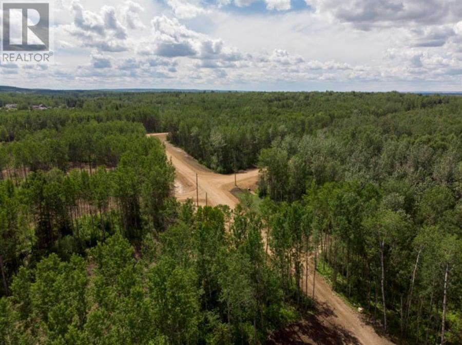 Lot 4 RANGE RD 224 Rural Athabasca County, AB - Image 19