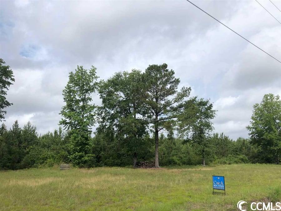 TBD Fifteen Mile Bay Rd. Nichols, SC - Image 6