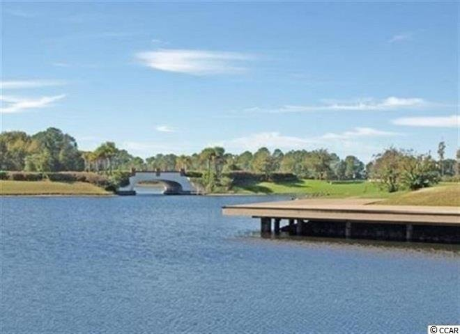 2200 Wood Stork Dr. Conway, SC - Image 7