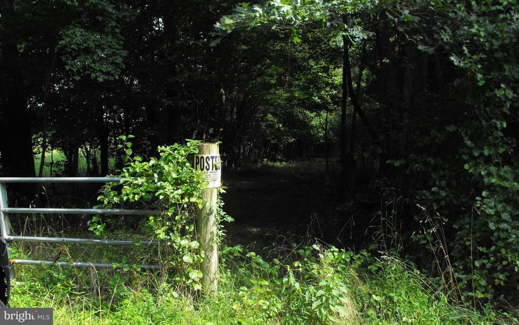 00 Pine Pitch Road Harrington, DE - Image 1