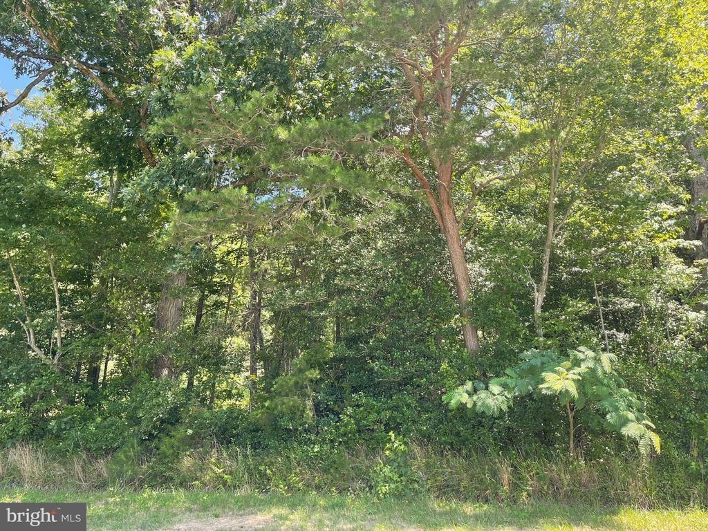 12645 Ponder Road Ellendale, DE - Image 1