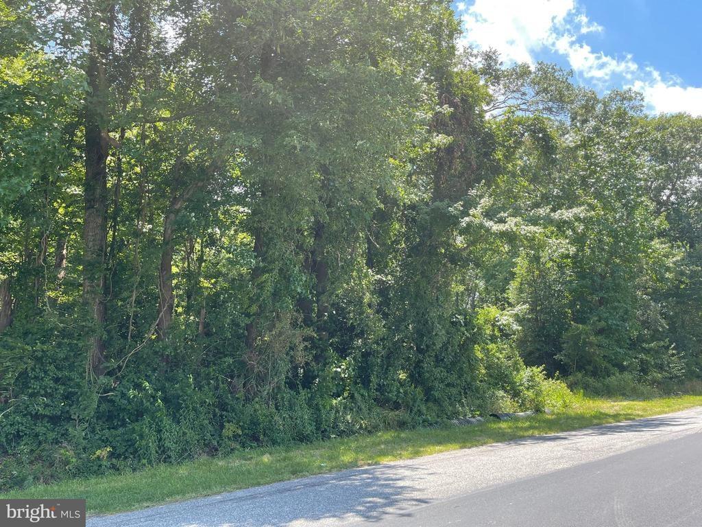 12645 Ponder Road Ellendale, DE - Image 2